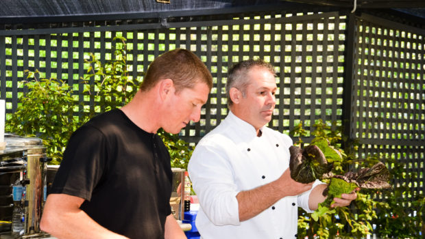 Springfest Hobart 2015: The Chef & The Gardener