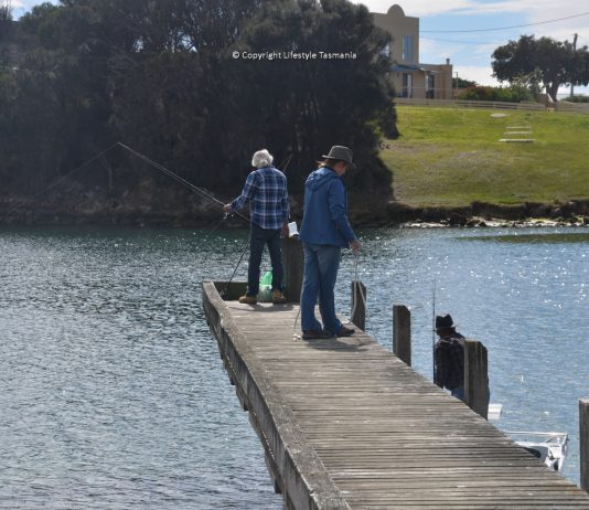 fishing scamander jetty